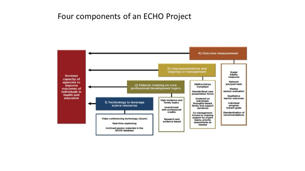 There are four components to every ECHO Project. See below.